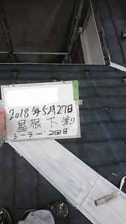 1345D064-CDDB-47A2-B2EF-F31EB3286073.jpeg