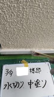 14BDB985-DFF3-4C69-8174-3D6258857ACD.jpeg