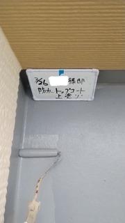 326A78D3-3DDF-4E19-BDAD-732AE5D287F0.jpeg